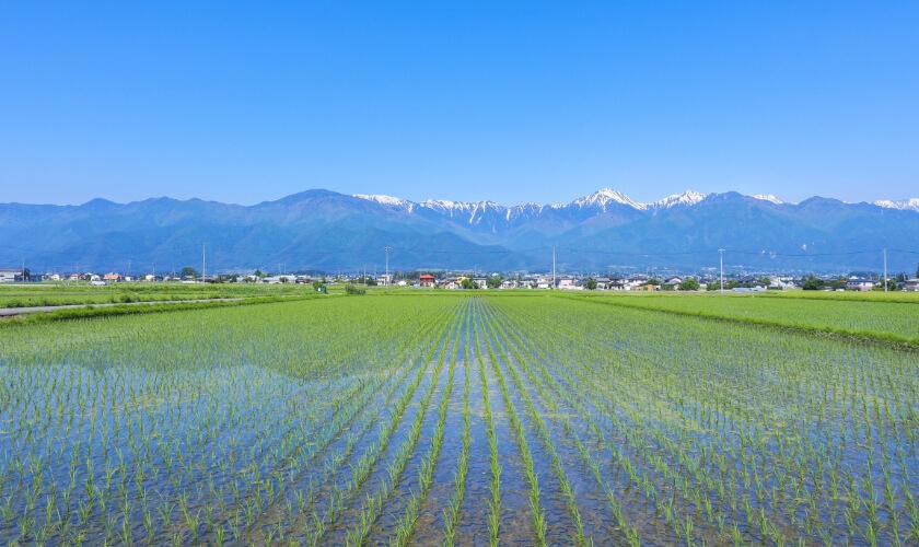 Kitaazumi area