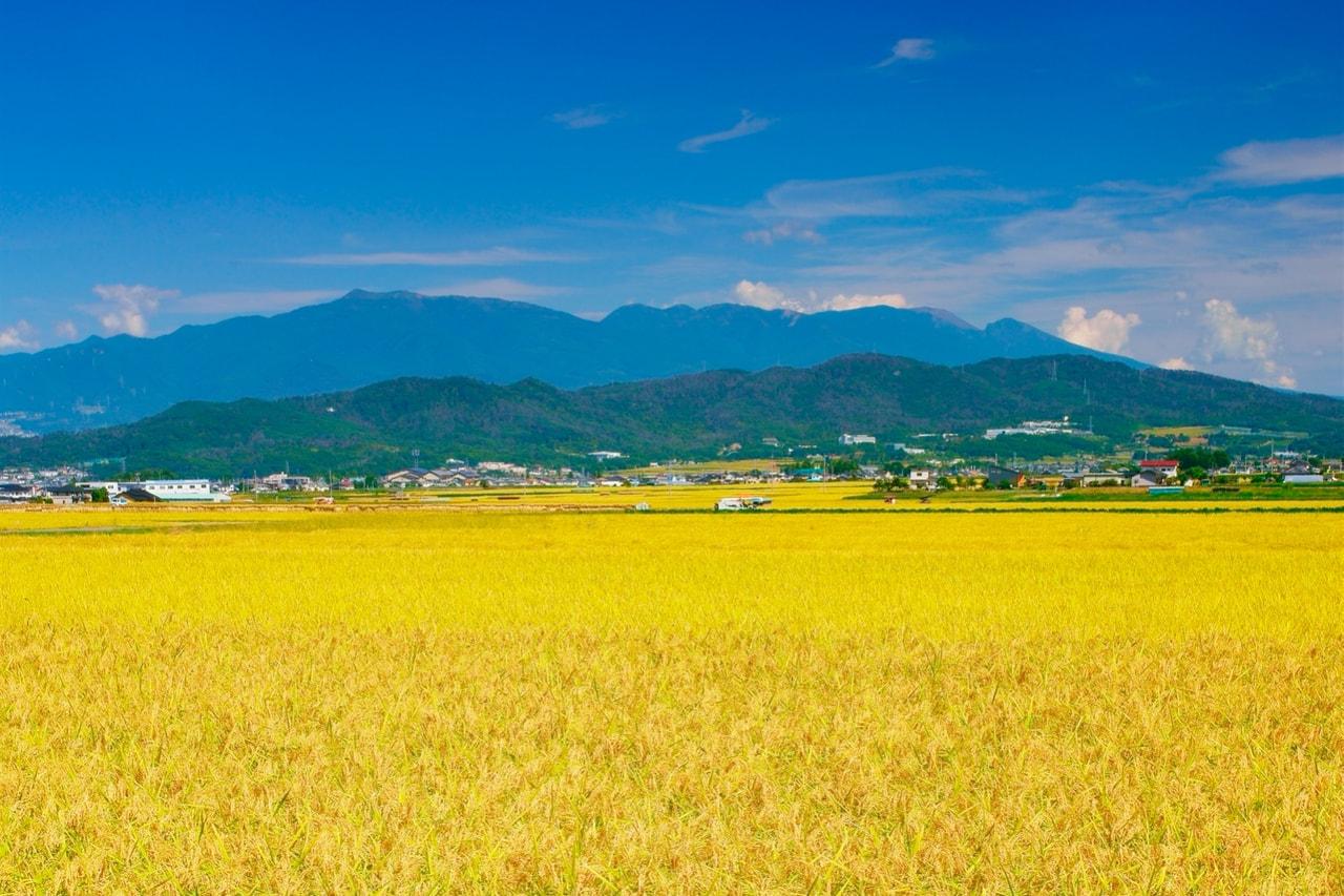 長野県の日本酒をとりまく風土と歴史
